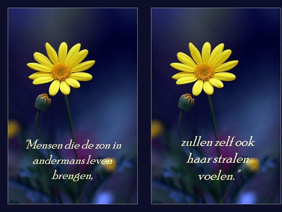 Wie een goed humeur bewaart, wordt veel last en zorg bespaard.