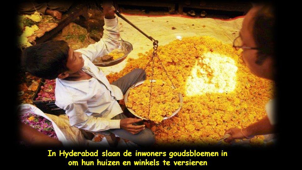 De Indiase boer Bhagwanbhai Patel controleert de kwaliteit van rozen uit Nederland in het dorp Kasindra