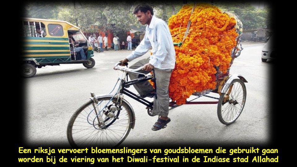 Indiase straatverkopers stallen bloemenslingers van kunsstof uit op de straten van Allahad voor het festival van de lichten , Diwali