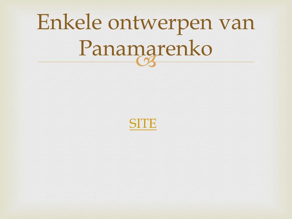   Een kunstwerk komt er niet vanzelf. Panamarenko had een idee voor een kunstwerk.  En dan? Van idee tot kunstwerk