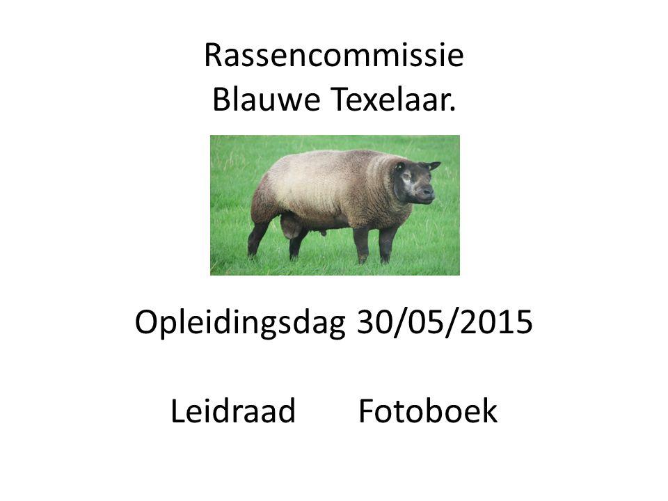 Rassencommissie Blauwe Texelaar. Opleidingsdag 30/05/2015 Leidraad Fotoboek