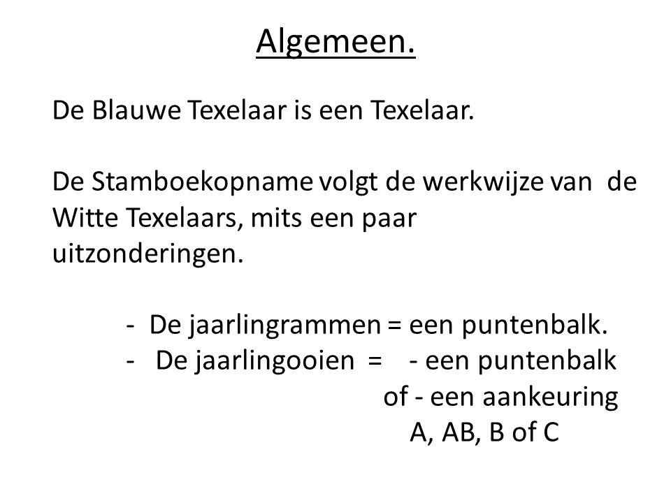 Algemeen. De Blauwe Texelaar is een Texelaar.
