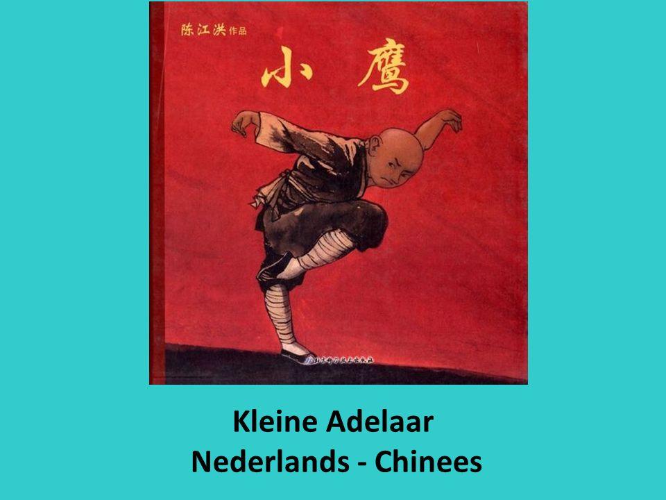 Kleine Adelaar Nederlands - Chinees
