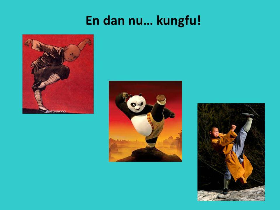 En dan nu… kungfu!