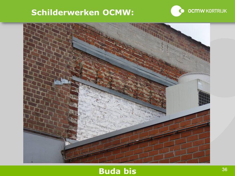 36 Schilderwerken OCMW: Buda bis