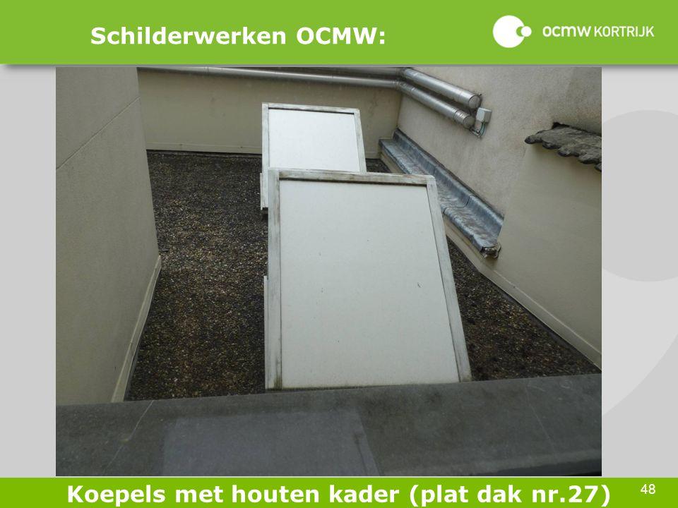 48 Schilderwerken OCMW: Koepels met houten kader (plat dak nr.27)