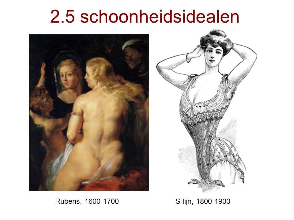 Rubens, 1600-1700S-lijn, 1800-1900 2.5 schoonheidsidealen