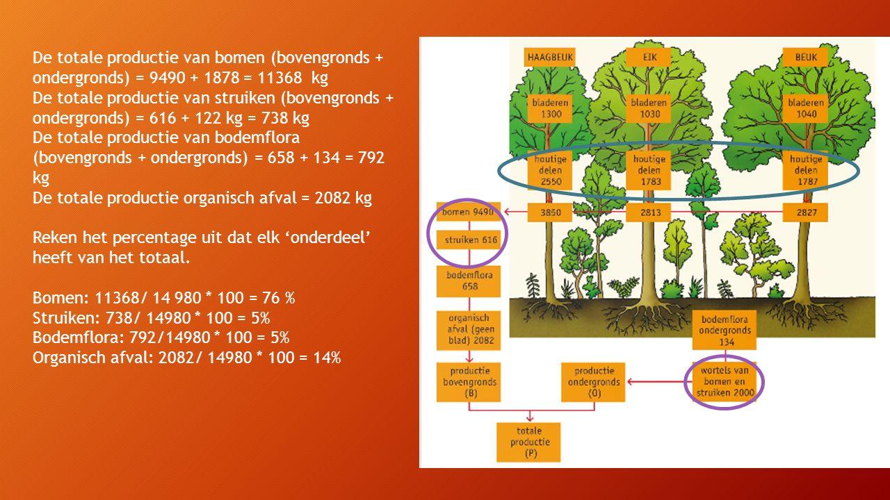 De totale productie van bomen (bovengronds + ondergronds) = 9490 + 1878 = 11368 kg De totale productie van struiken (bovengronds + ondergronds) = 616