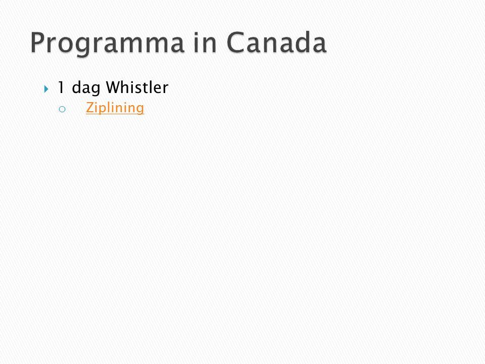  1 dag Whistler o Ziplining Ziplining