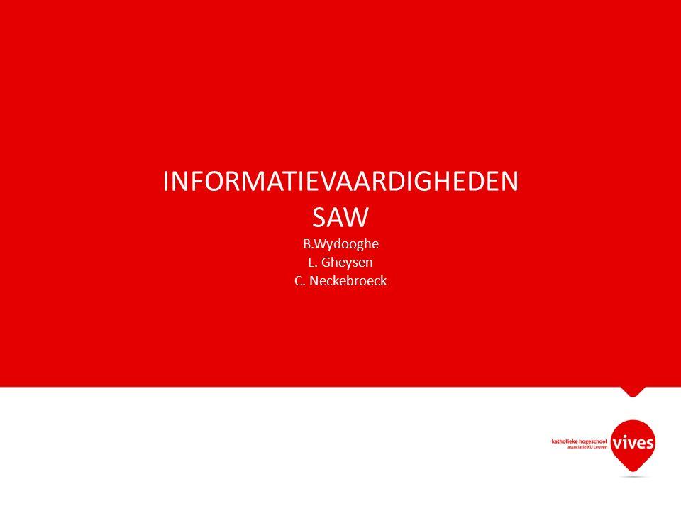 INFORMATIEVAARDIGHEDEN SAW B.Wydooghe L. Gheysen C. Neckebroeck