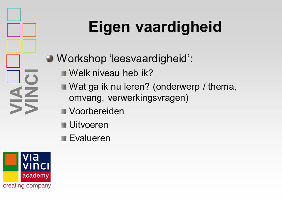 VIAVINCI Eigen vaardigheid Workshop 'leesvaardigheid': Welk niveau heb ik.
