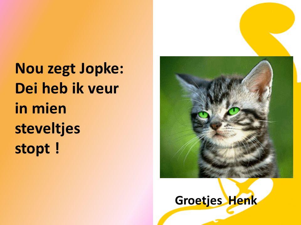 Juffraauw vroagt aan Jopke: Woar binnen dien hanschounen ?