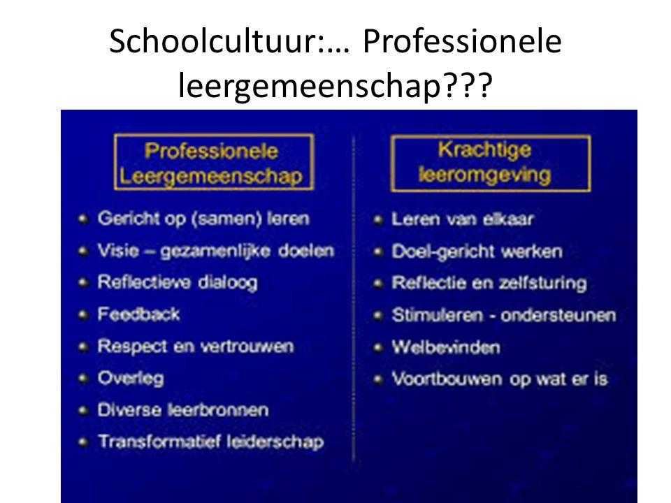 Schoolcultuur:… Professionele leergemeenschap???