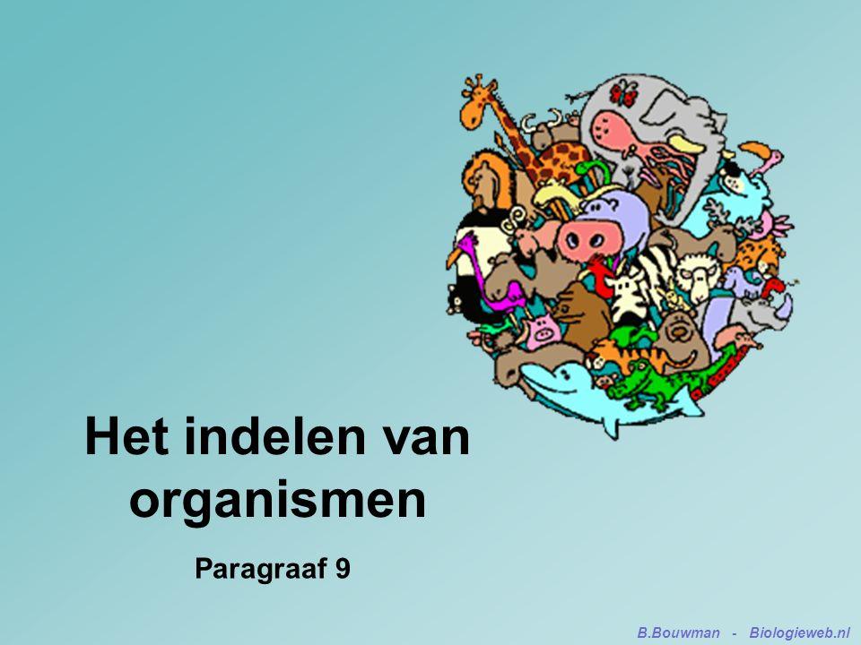 Het indelen van organismen Paragraaf 9 B.Bouwman - Biologieweb.nl