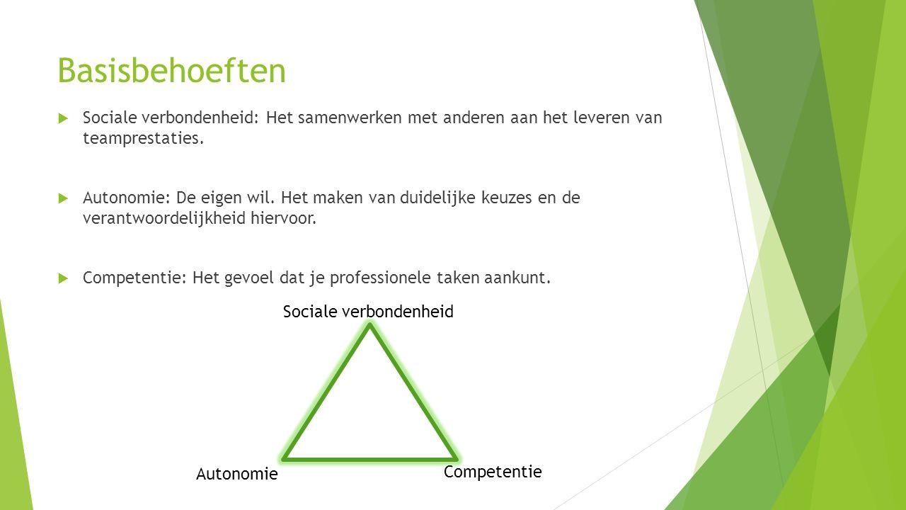 Basisbehoeften  Sociale verbondenheid: Het samenwerken met anderen aan het leveren van teamprestaties.