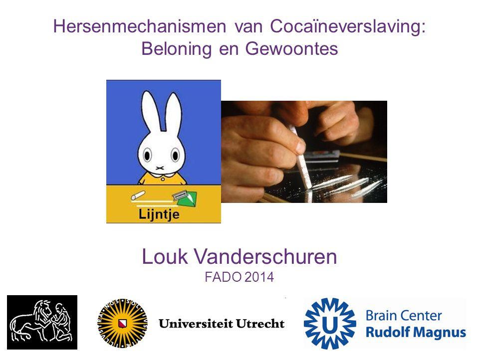 Louk Vanderschuren FADO 2014 Hersenmechanismen van Cocaïneverslaving: Beloning en Gewoontes
