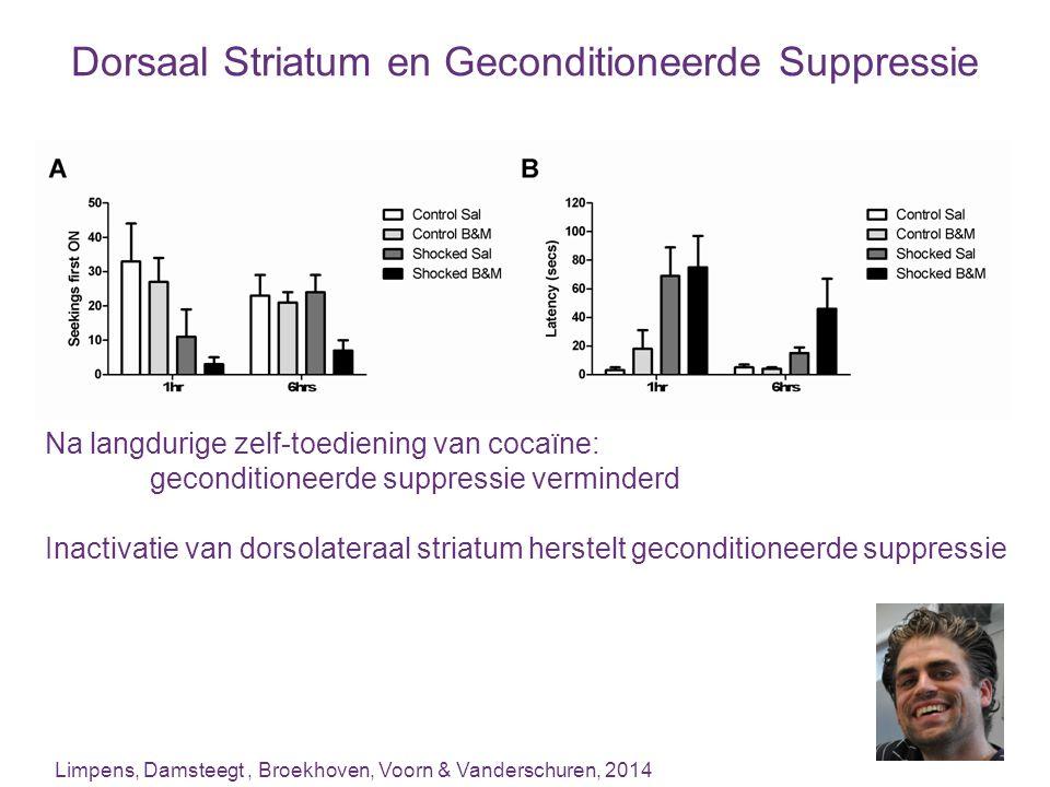 Dorsaal Striatum en Geconditioneerde Suppressie Limpens, Damsteegt, Broekhoven, Voorn & Vanderschuren, 2014 Na langdurige zelf-toediening van cocaïne: