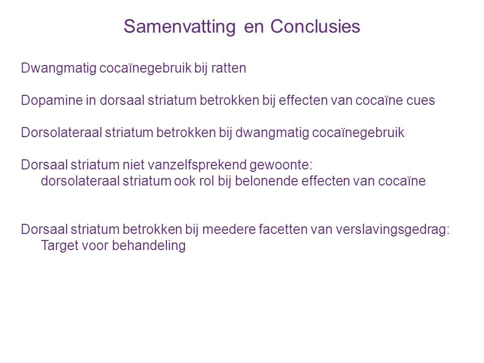 Samenvatting en Conclusies Dwangmatig cocaïnegebruik bij ratten Dopamine in dorsaal striatum betrokken bij effecten van cocaïne cues Dorsolateraal str