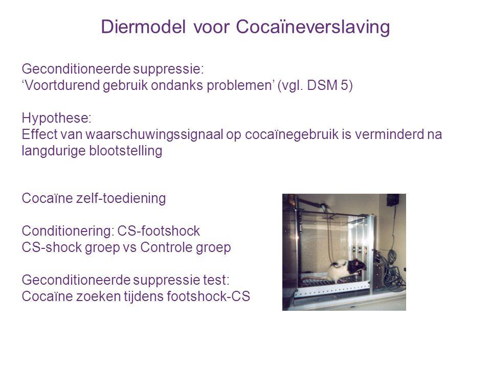 Diermodel voor Cocaïneverslaving Na langdurig cocaïnegebruik vermindert controle over inname: Gevoeligheid voor waarschuwingssignaal Vanderschuren & Everitt, Science 2004; Limpens et al., Drug Alcohol Depend 2014 CS-shockControle Beperkt cocaïneLangdurig cocaïne
