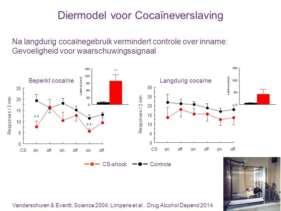 Diermodel voor Cocaïneverslaving Na langdurig cocaïnegebruik vermindert controle over inname: Gevoeligheid voor waarschuwingssignaal Vanderschuren & E