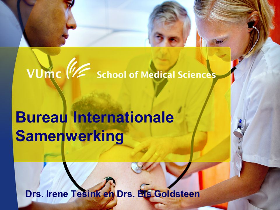 Bureau Internationale Samenwerking Drs. Irene Tesink en Drs. Els Goldsteen
