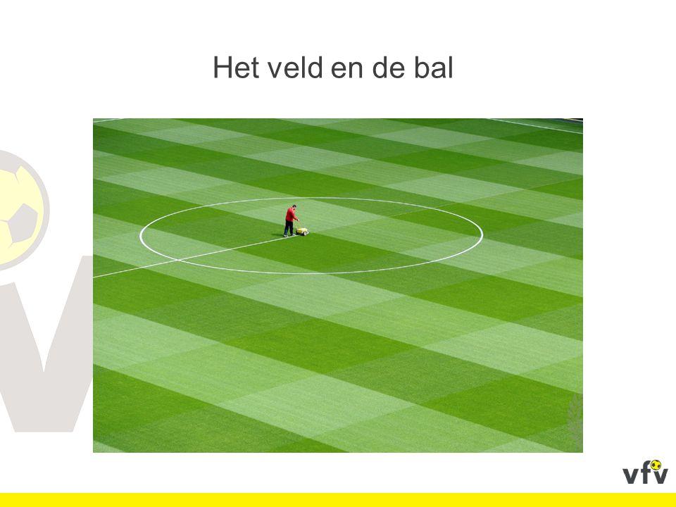 Het veld en de bal