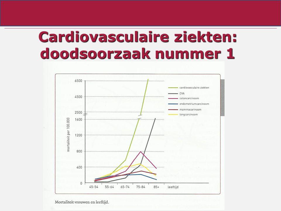 Cardiovasculaire ziekten: doodsoorzaak nummer 1