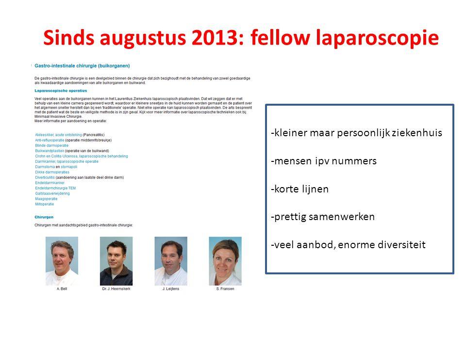 Sinds augustus 2013: fellow laparoscopie -kleiner maar persoonlijk ziekenhuis -mensen ipv nummers -korte lijnen -prettig samenwerken -veel aanbod, enorme diversiteit