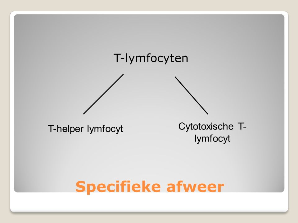 Specifieke afweer T-lymfocyten T-helper lymfocyt Cytotoxische T- lymfocyt