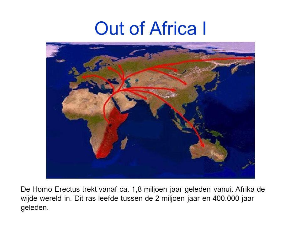 Out of Africa I De Homo Erectus trekt vanaf ca.