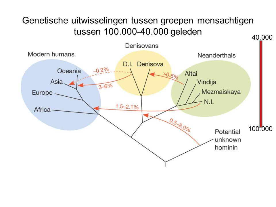 Genetische uitwisselingen tussen groepen mensachtigen tussen 100.000-40.000 geleden 40.000 100.000