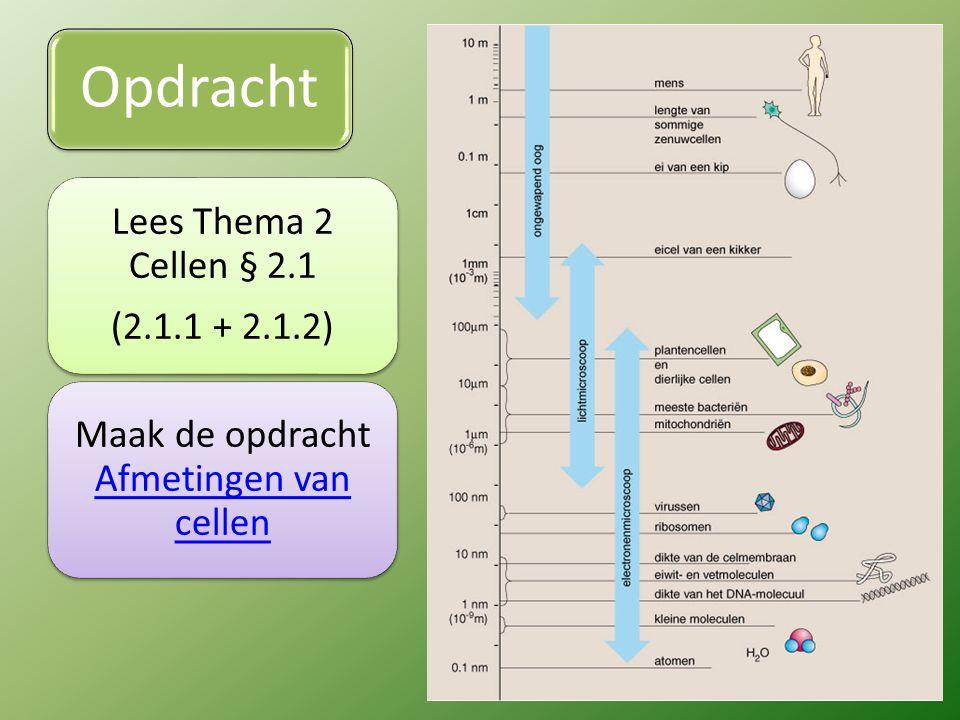 Opdracht Lees Thema 2 Cellen § 2.1 (2.1.1 + 2.1.2) Maak de opdracht Afmetingen van cellen Afmetingen van cellen