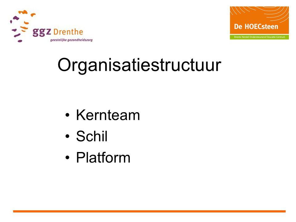 Organisatiestructuur Kernteam Schil Platform