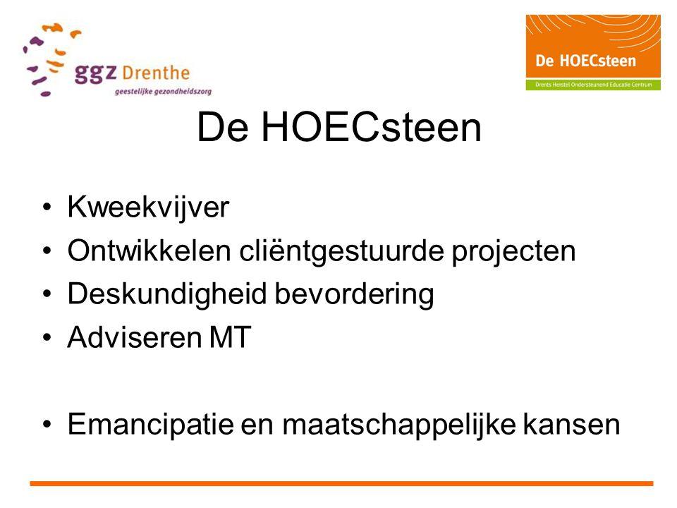 De HOECsteen Kweekvijver Ontwikkelen cliëntgestuurde projecten Deskundigheid bevordering Adviseren MT Emancipatie en maatschappelijke kansen