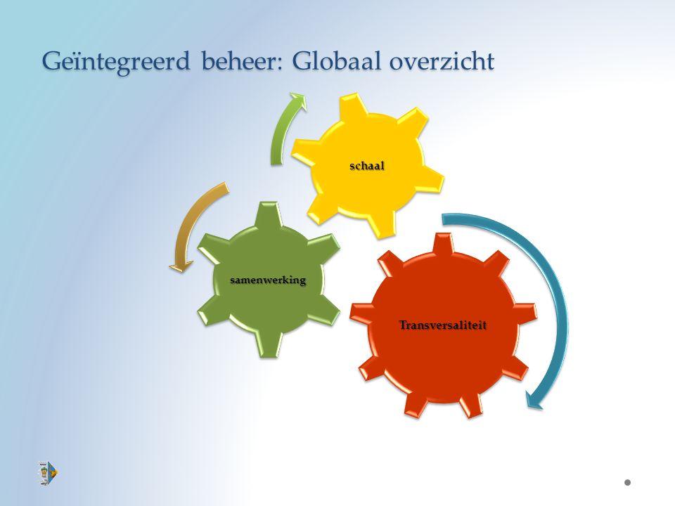 Geïntegreerd beheer: Globaal overzicht Transversaliteit samenwerking schaal