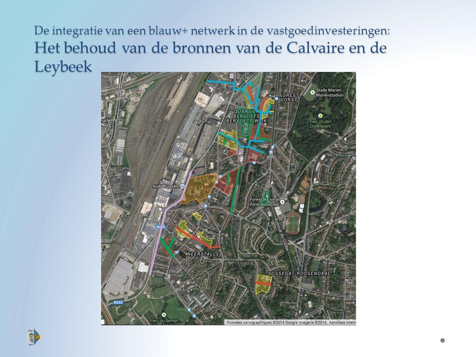 De integratie van een blauw+ netwerk in de vastgoedinvesteringen: Het behoud van de bronnen van de Calvaire en de Leybeek