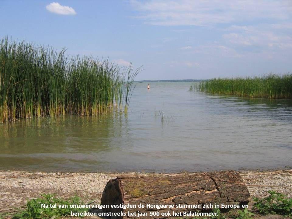 Tevens is het het grootste zoetwatermeer van Midden-Europa. Het aangenaam warme water is een streling voor lichaam en ziel.