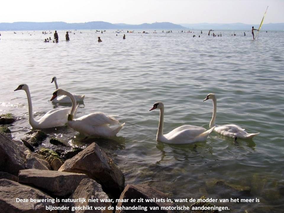In de negentiende eeuw deed het nieuws de ronde, dat het water van het Balatonmeer geneeskrachtig zou zijn.....