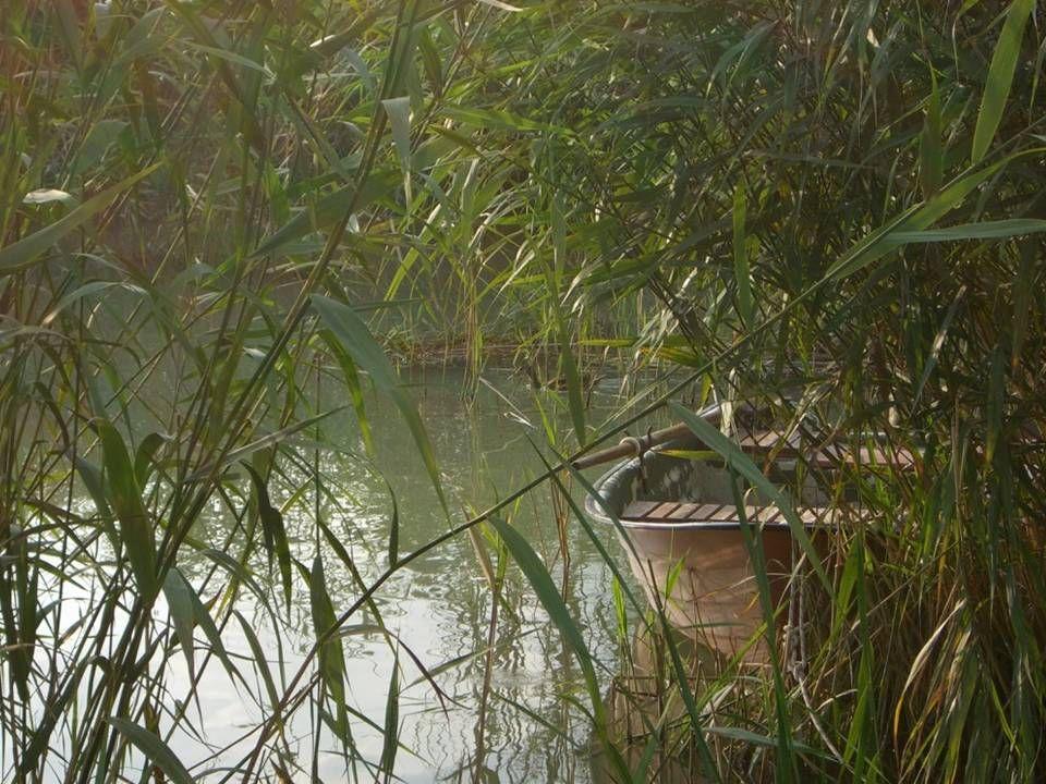 Het meest waardevolle gedeelte van het Nationale Park daar is het Kleine Balatonmeer. Dit reusachtige plassen- en moerasgebied bestaat vooral uit riet