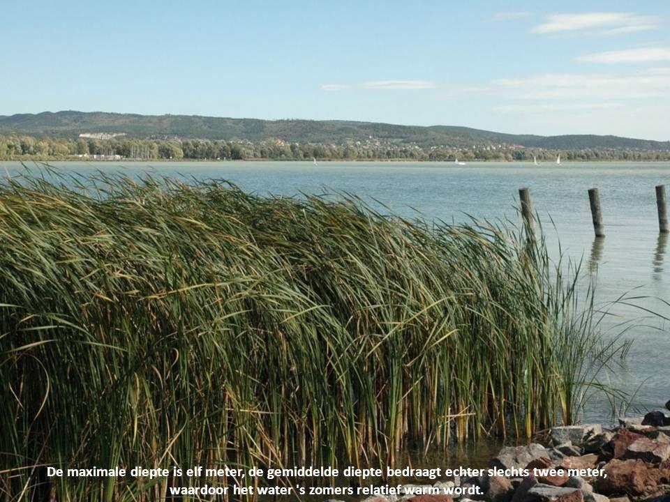 Het Balatonmeer is het grootste meer (592 km²) van Midden-Europa. Het meer ligt in het westen van Hongarije en heeft een langgerekte vorm...