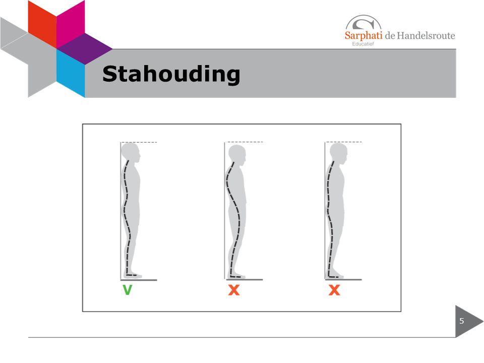Stahouding 5