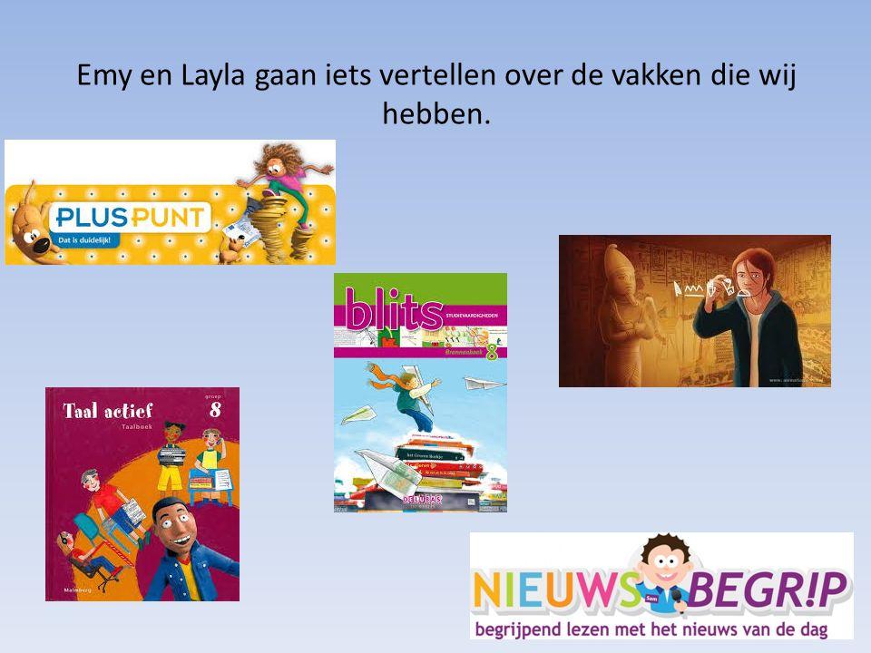 Speerpunten Zelfstandigheid Motivatie Huiswerk Taakgerichtheid Doorzettingsvermogen