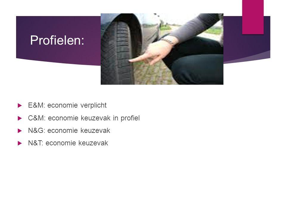 Profielen:  E&M: economie verplicht  C&M: economie keuzevak in profiel  N&G: economie keuzevak  N&T: economie keuzevak