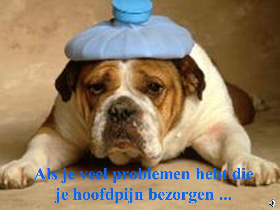 Als je veel problemen hebt die je hoofdpijn bezorgen...