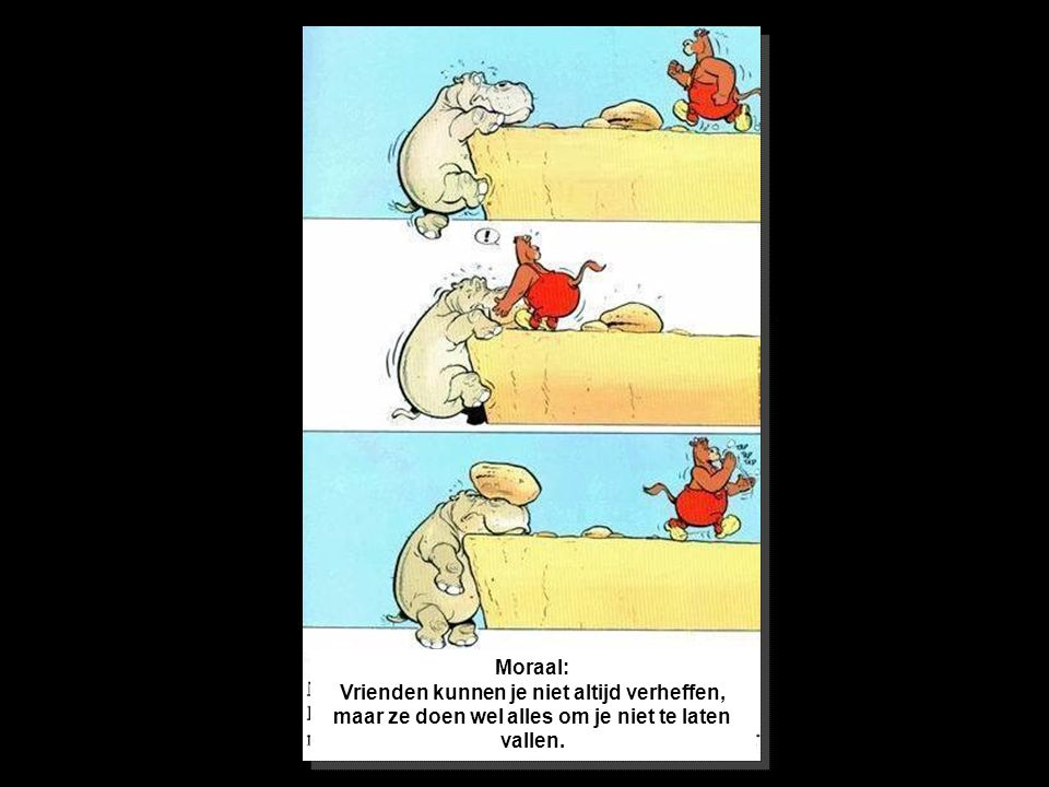 Moraal: Vrienden kunnen je niet altijd verheffen, maar ze doen wel alles om je niet te laten vallen.