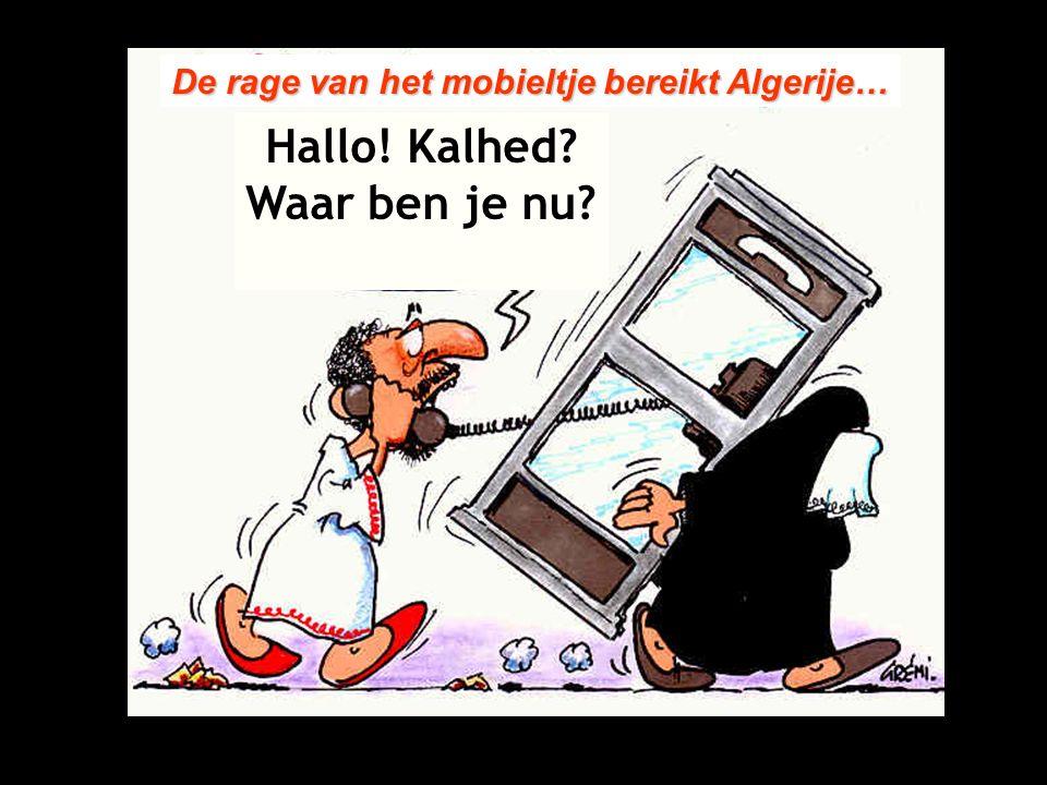 De rage van het mobieltje bereikt Algerije… Hallo! Kalhed? Waar ben je nu?