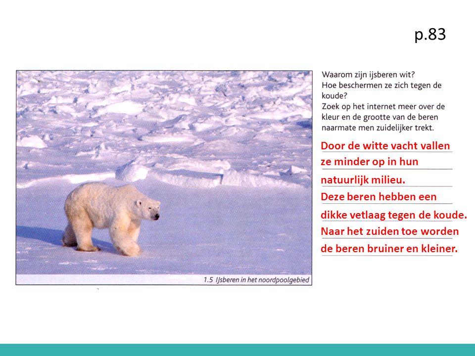 p.83 Door de witte vacht vallen ze minder op in hun natuurlijk milieu. Deze beren hebben een dikke vetlaag tegen de koude. Naar het zuiden toe worden