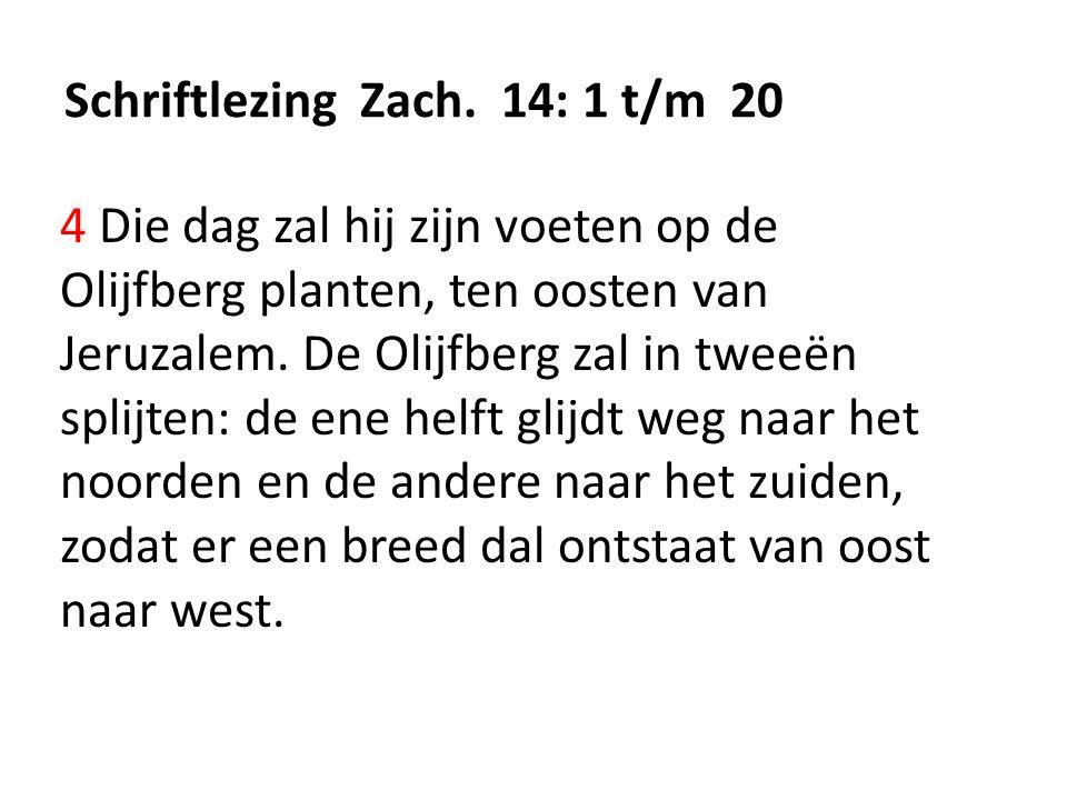 Schriftlezing Zach. 14: 1 t/m 20 4 Die dag zal hij zijn voeten op de Olijfberg planten, ten oosten van Jeruzalem. De Olijfberg zal in tweeën splijten: