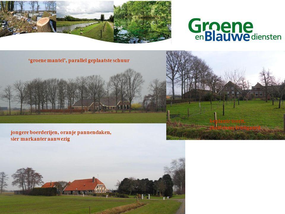 'groene mantel', parallel geplaatste schuur jongere boerderijen, oranje pannendaken, sier markanter aanwezig beplante toerit, (halfstam) fruitgaard