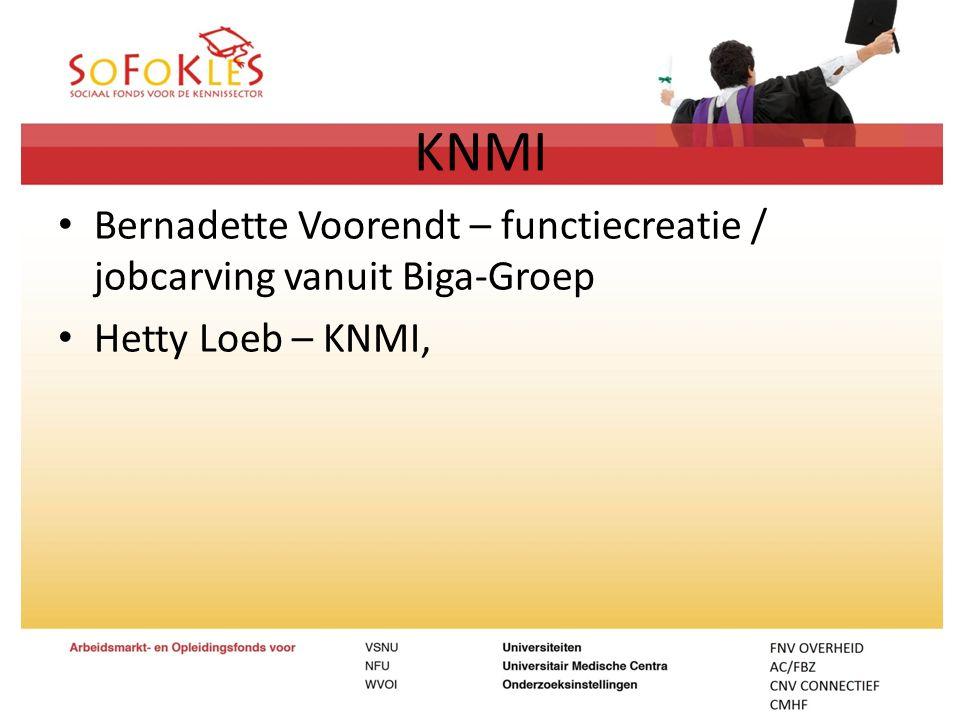 KNMI Bernadette Voorendt – functiecreatie / jobcarving vanuit Biga-Groep Hetty Loeb – KNMI,